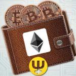 Топ кошельков и сайтов для майнинга криптовалют